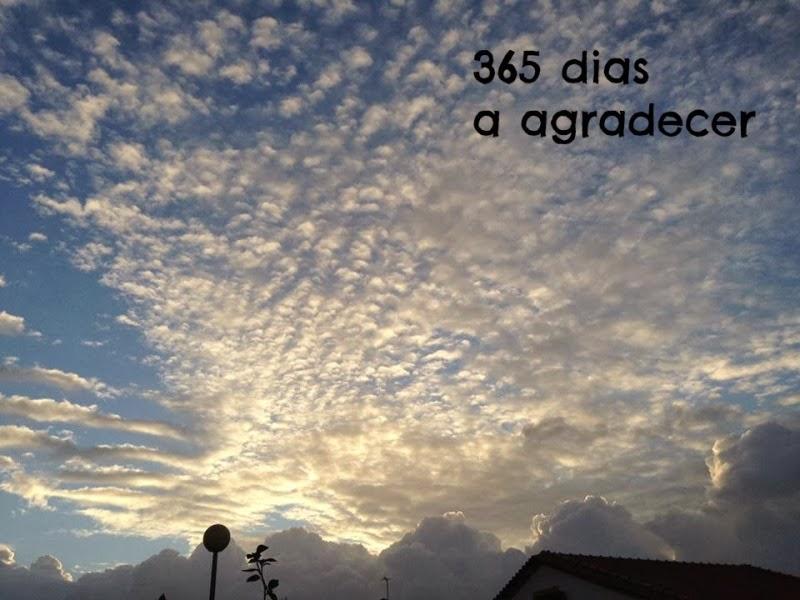 365 dias de gratidão