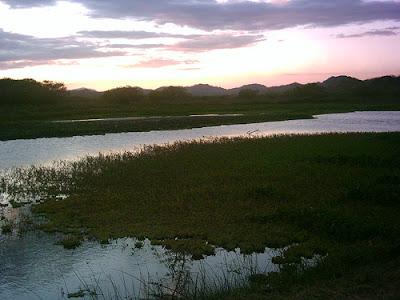 Río Cañas