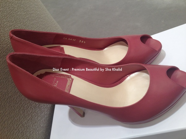 premium beautiful Dior shoes