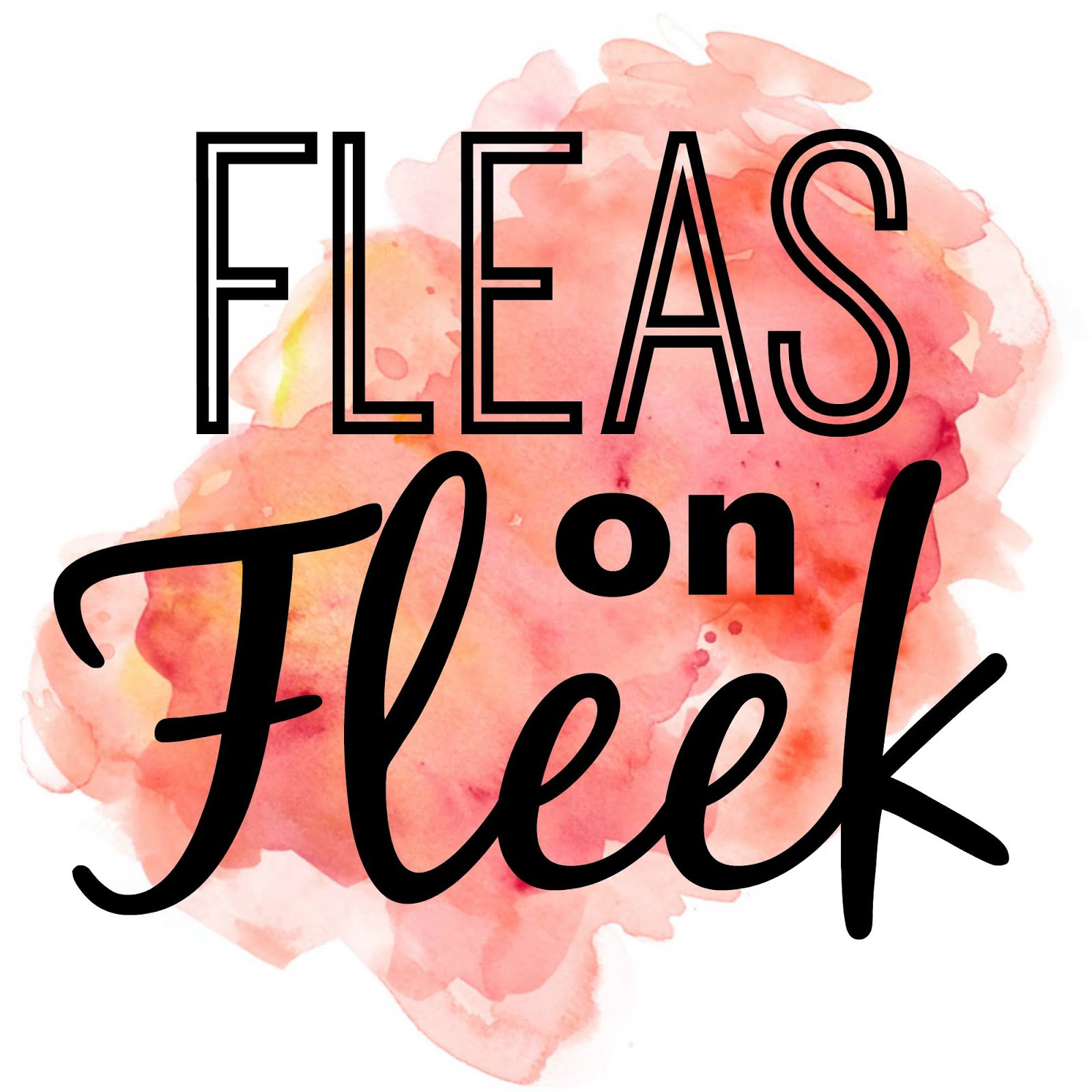 Fleas on Fleak Pop Up Flea Market