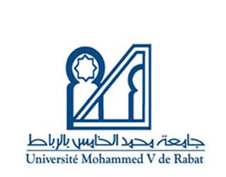جامعة محمد الخامس بالرباط تحدث ماستر لعلوم المتاحف بشراكة مع المؤسسة الوطنية للمتاحف