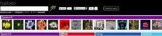 Bing Yahoo YouTube Twitter