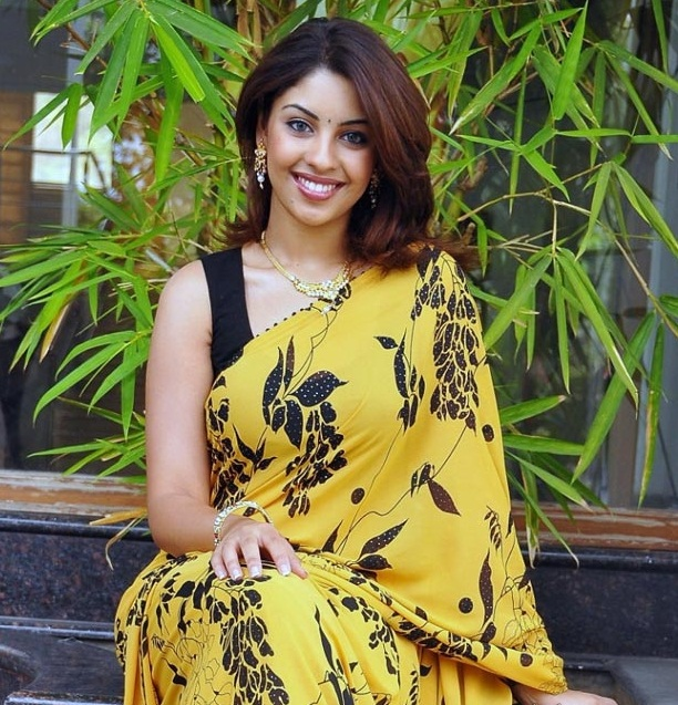 richa gangopadhyay in saree latest photos