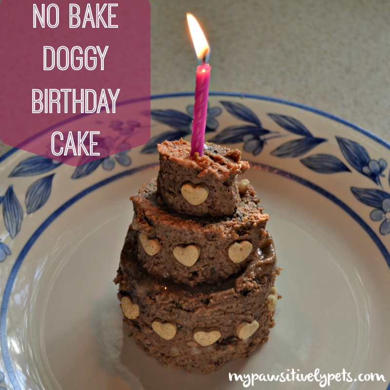 DIY No Bake Birthday Cake for Dogs