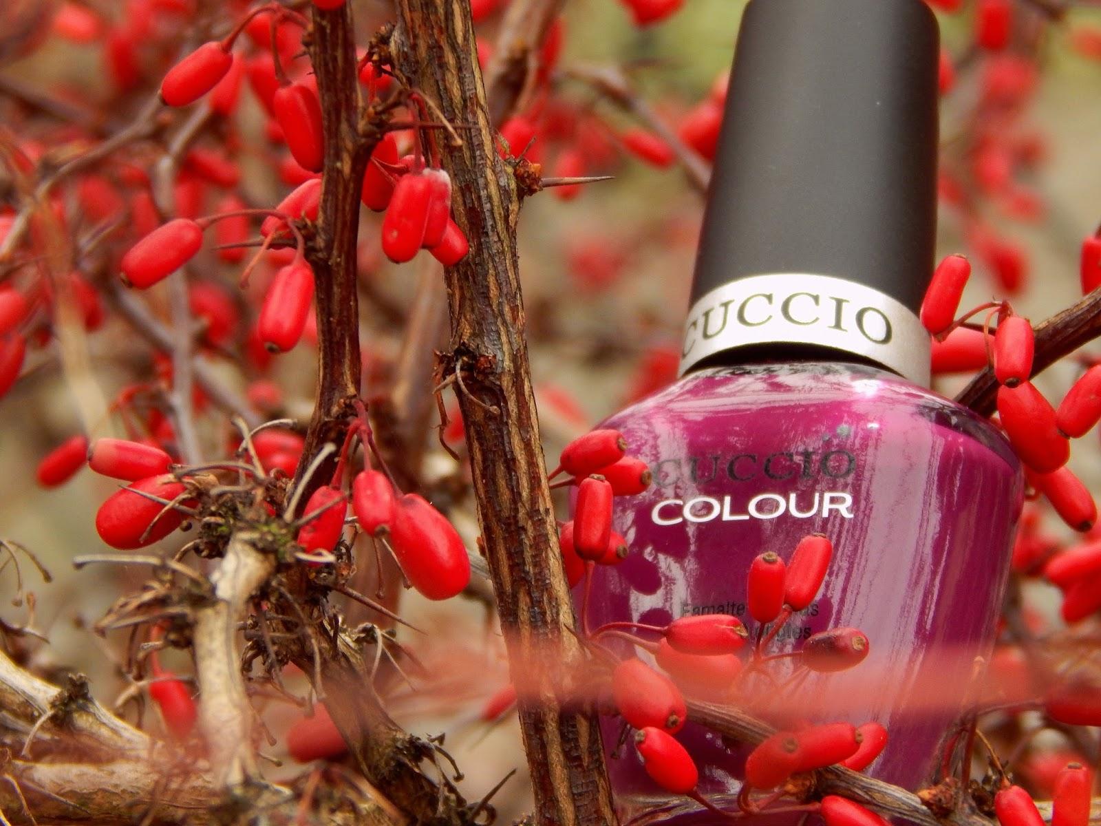 lakier cuccio, lakier Cuccio nr 6015 - kolor ciemny fiolet