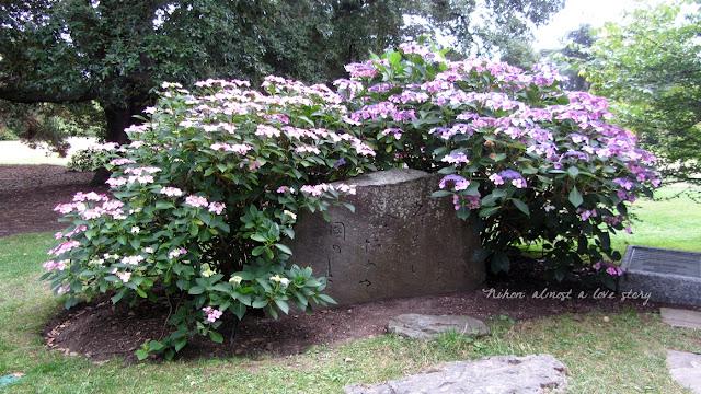 Kew gardens japan
