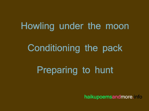 haiku poems about animals, haiku poems images