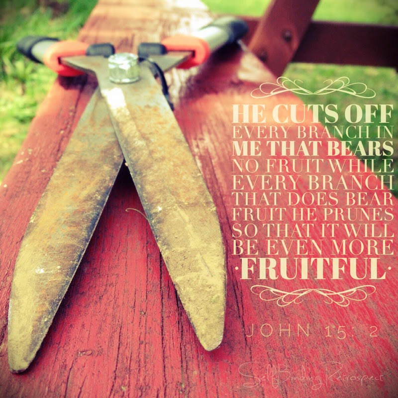 spring pruning, John 15:2, be fruitful