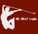 All About Wushu