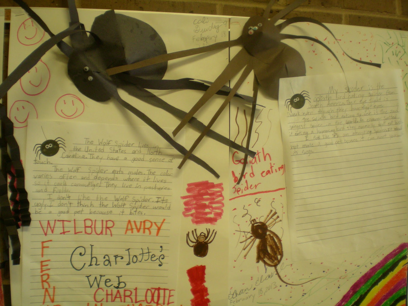 spiders research paper