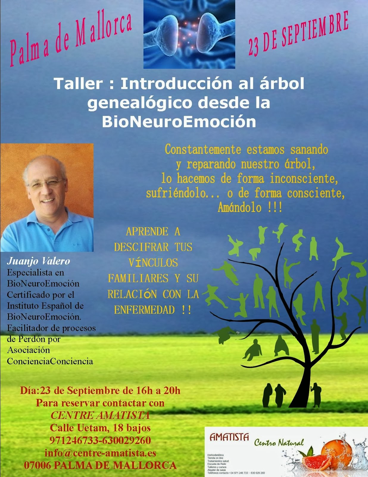 Taller Introducción al Árbol desde la BioNeuroEmoción en Palma de Mallorca