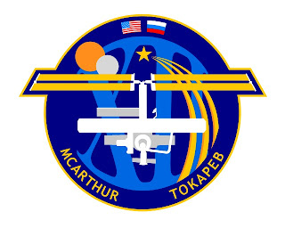 space station expedition 12 mission insignia patch