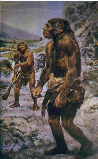 Los primeros hominidos tuvieron que suplir sus carencias físicas con todo tipo de instrumentos: arcos, pieles de abrigo,etc.