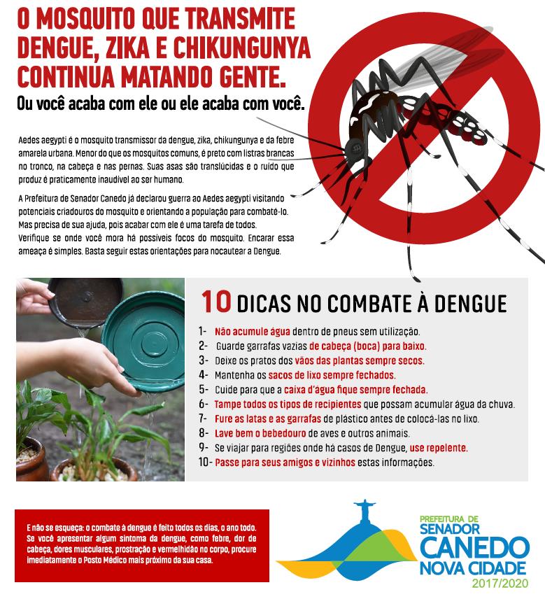 Dicas para o combate a Dengue (veja imagem)