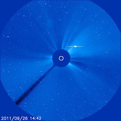 Elenin desde observatorio Soho de la Nasa