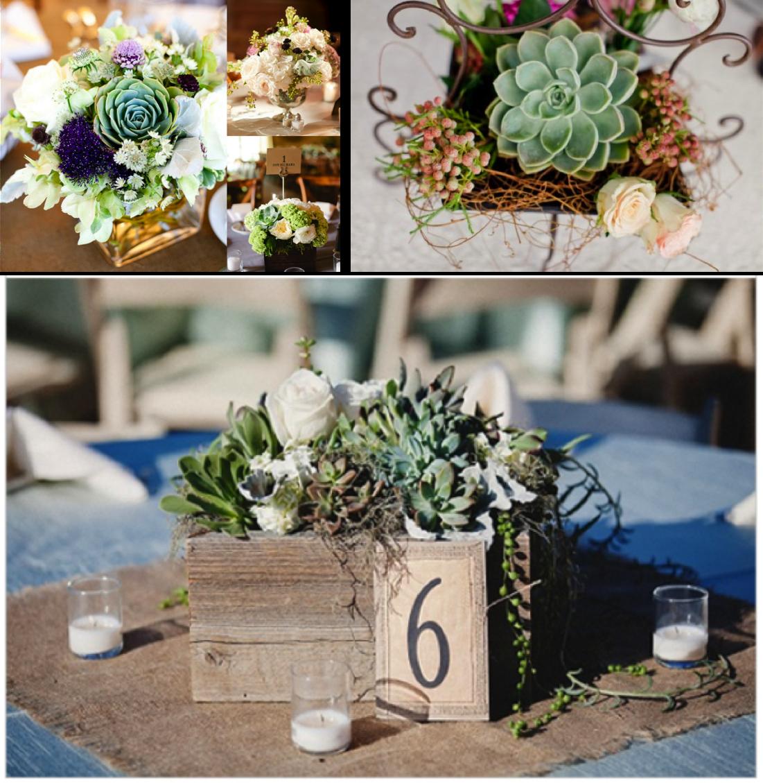 Decoración de boda con plantas suculentas