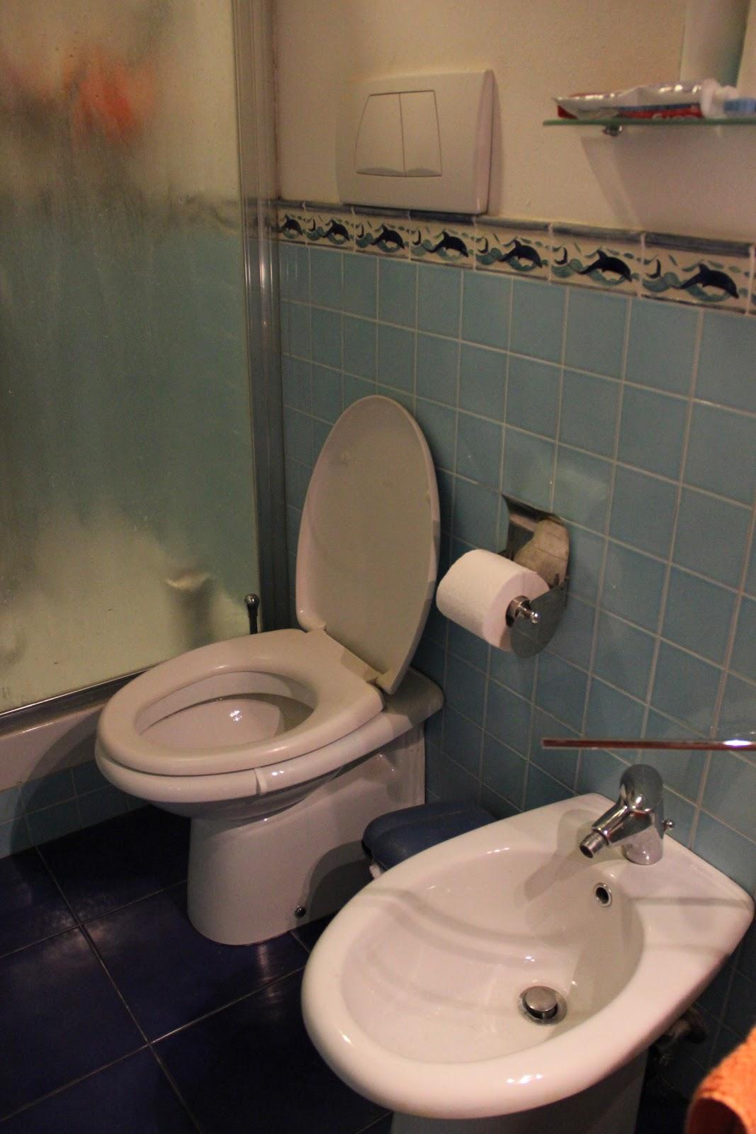 wonderings and wanderings : beware of italian bathrooms