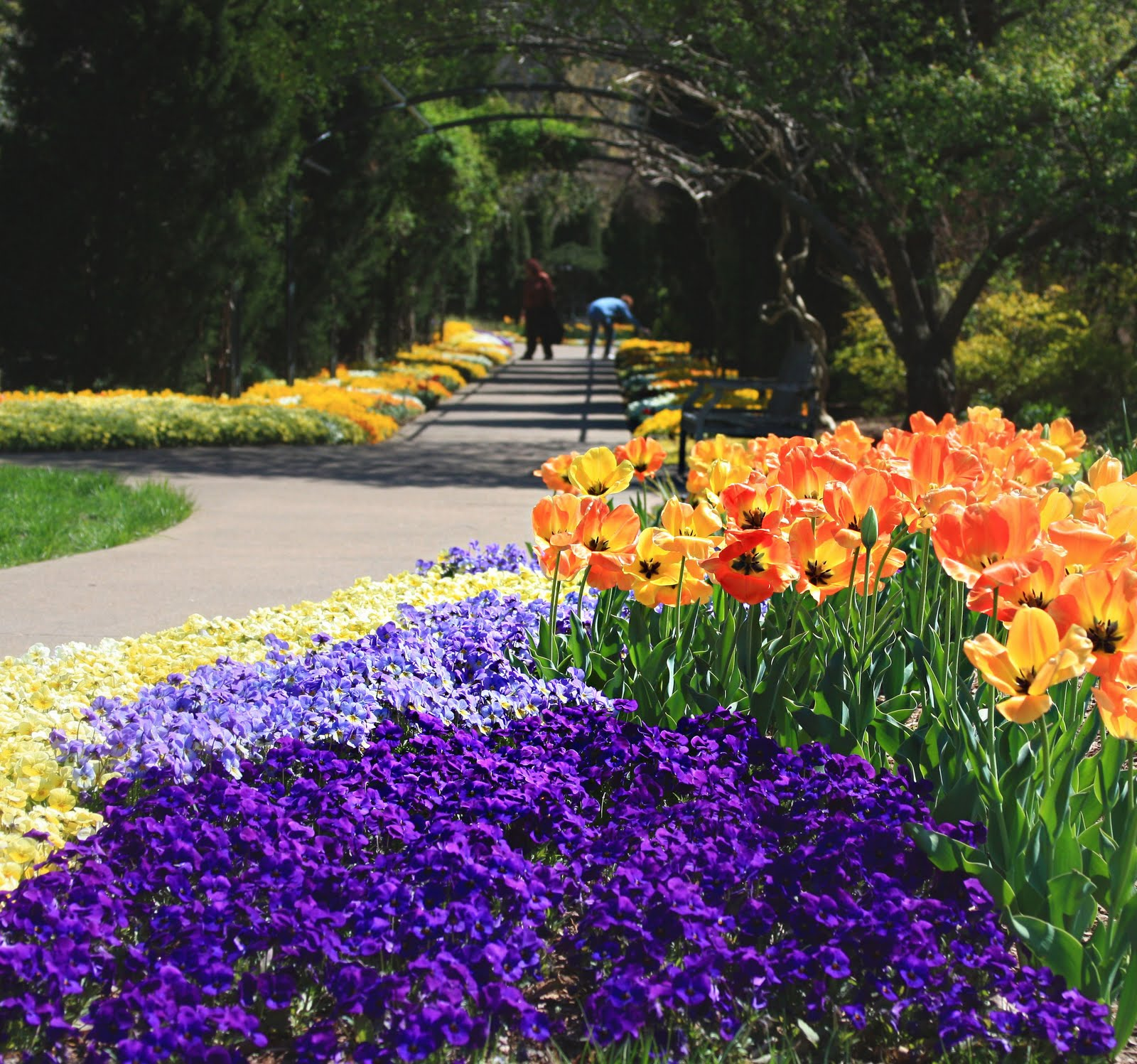 Erin S Art And Gardens Cheekwood Botanical Gardens