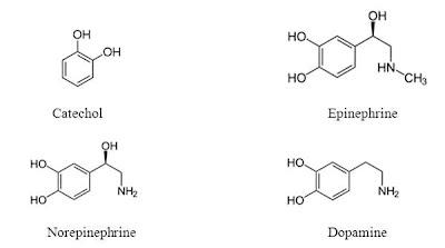 Catechol và các dẫn xuất amine