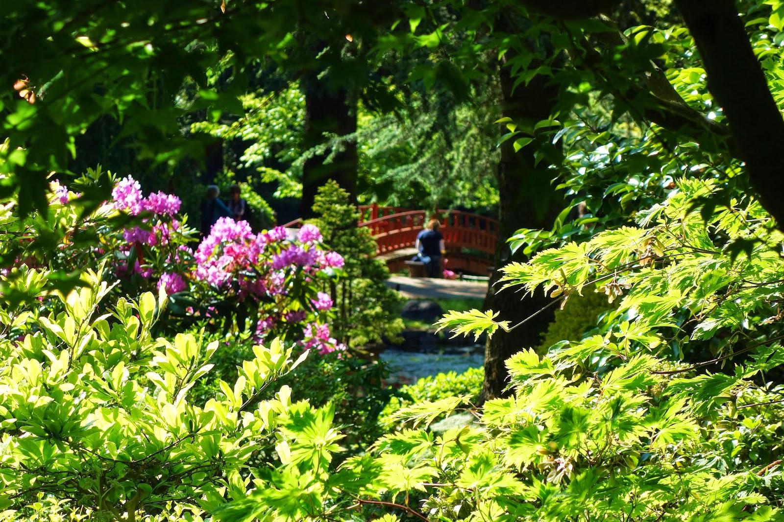 fontaine jardin zen fontaine jardin zen colombes u clic photo galerie fontaine a eau solaire de. Black Bedroom Furniture Sets. Home Design Ideas