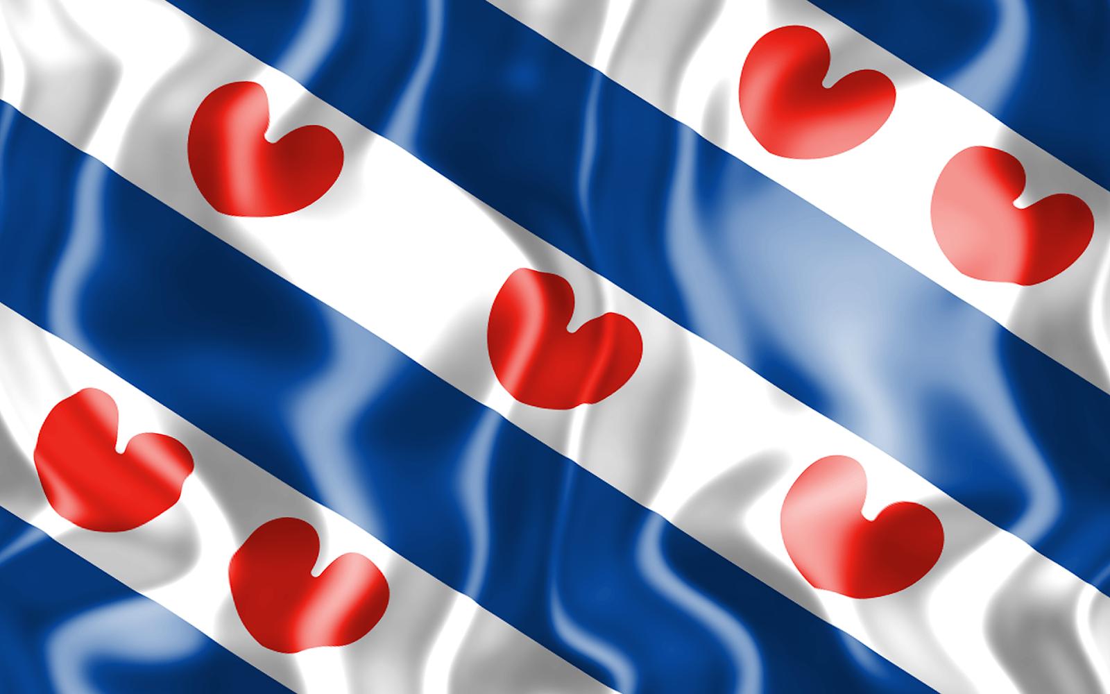 3D vlag van Friesland