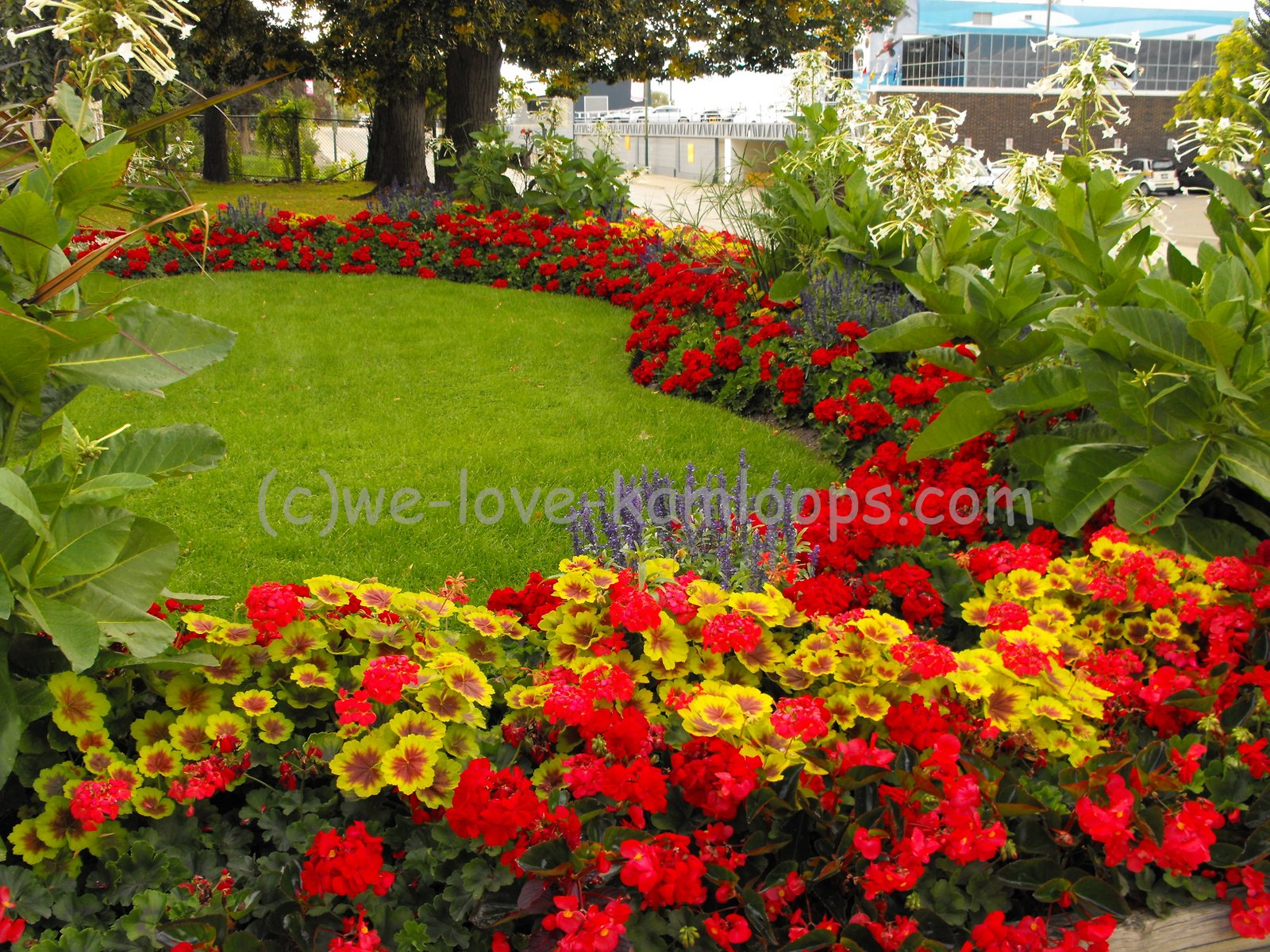 We love kamloops communities in bloom kamloops bc canada for Landscape design canada