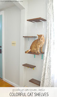http://www.plasteranddisaster.com/cat-shelves/