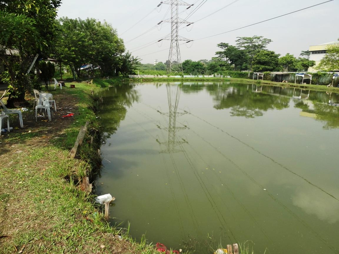 Fishing spots in kuala lumpur selangor dewan freshwater for Freshwater pond fish