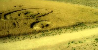 figura en los campos de trigo