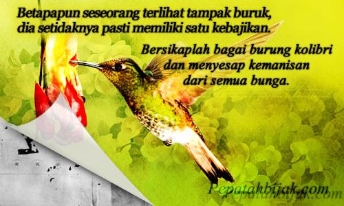 Kata Inspiratif - Kebajikan Kolibri