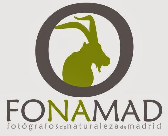 Fotógrafos de Naturaleza de Madrid