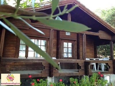 cabaña madera huerta dorotea