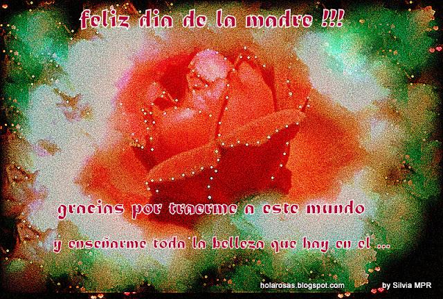 rosas rojas perfume del amor incondicional para el dia de la madres