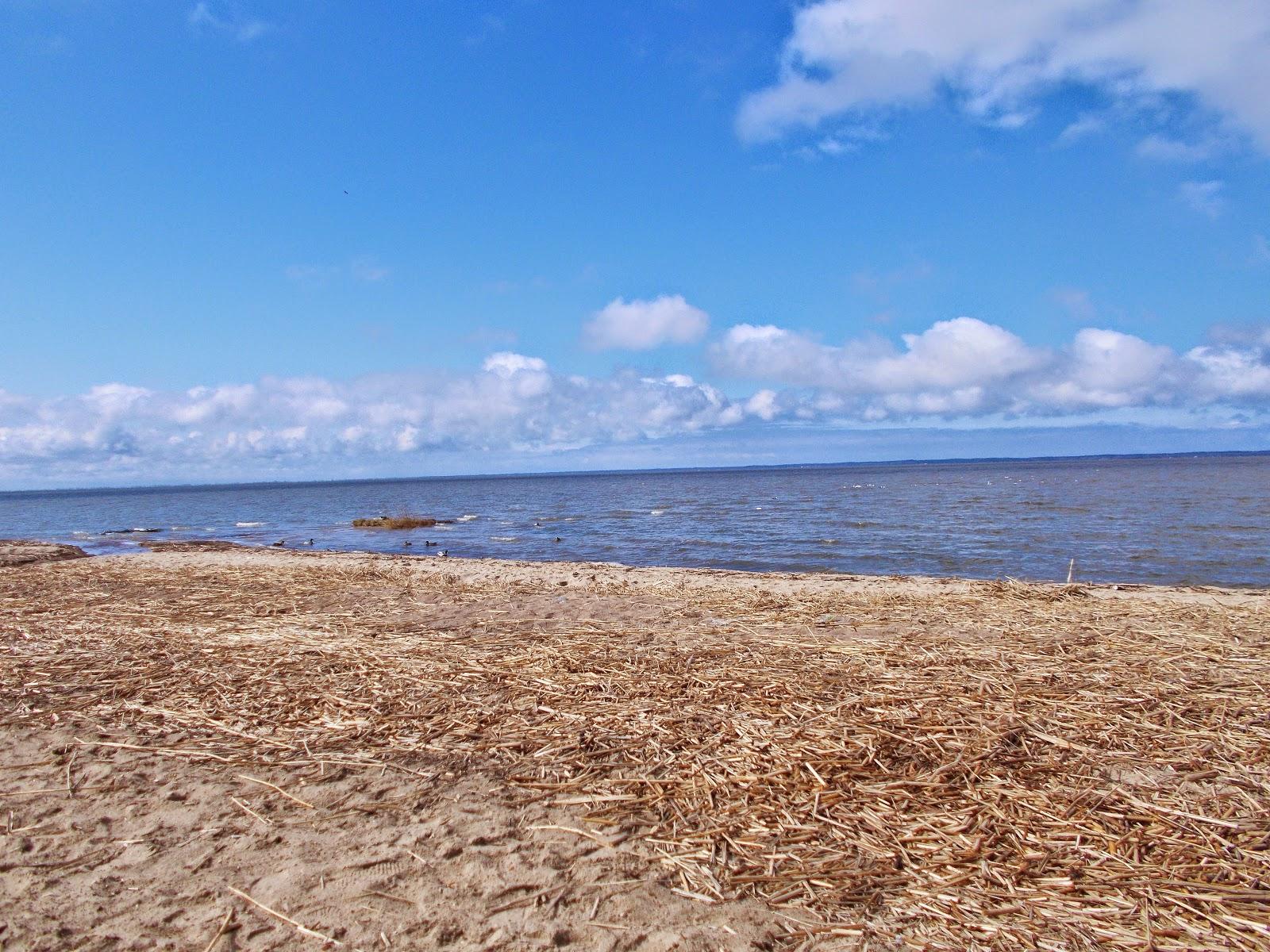 Wielkanocny plażing.