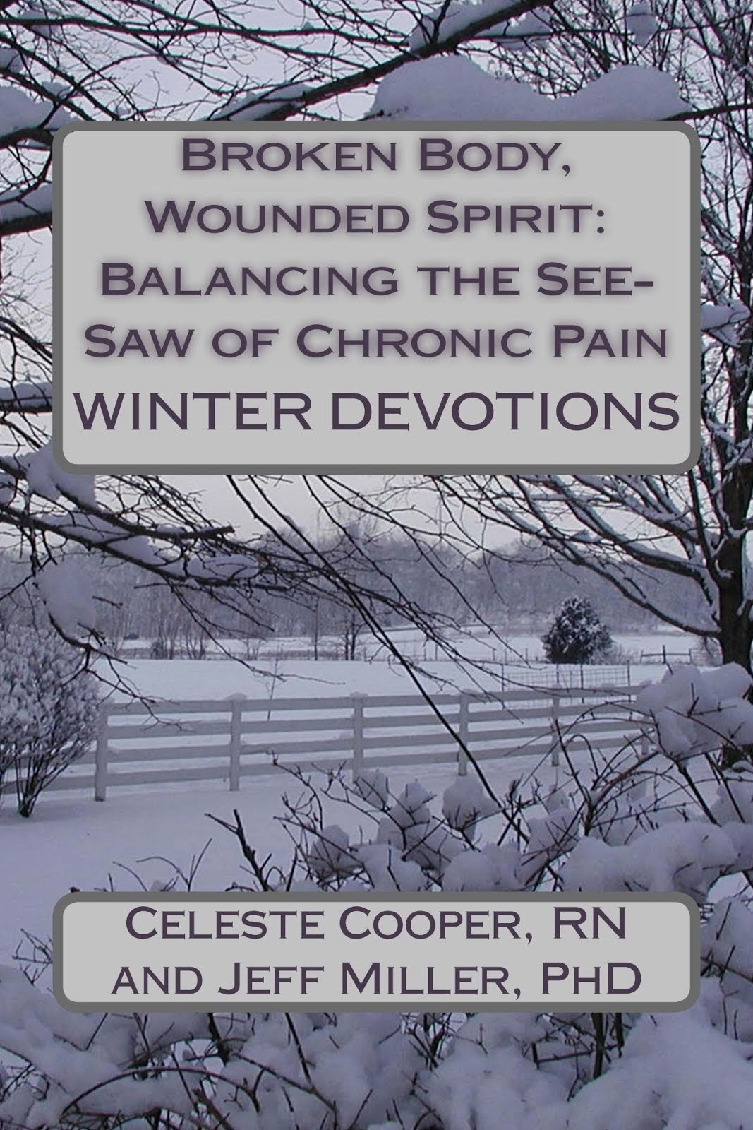 Broken Body, Wounded Spirit: Balancing the See-Saw of Chronic Pain