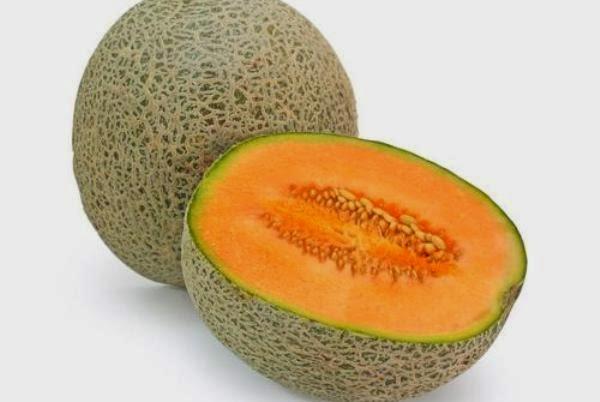 Blewah ialah buah yang banyak dipakai sebagai adonan minuman yang memperlihatkan kesegar MENANAM DAN MERAWAT TANAMAN BLEWAH
