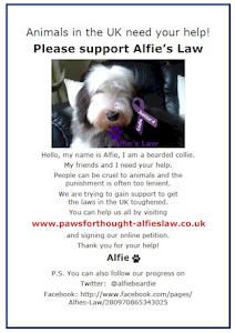 Camping and Exploring with Dogs support Alfies Law