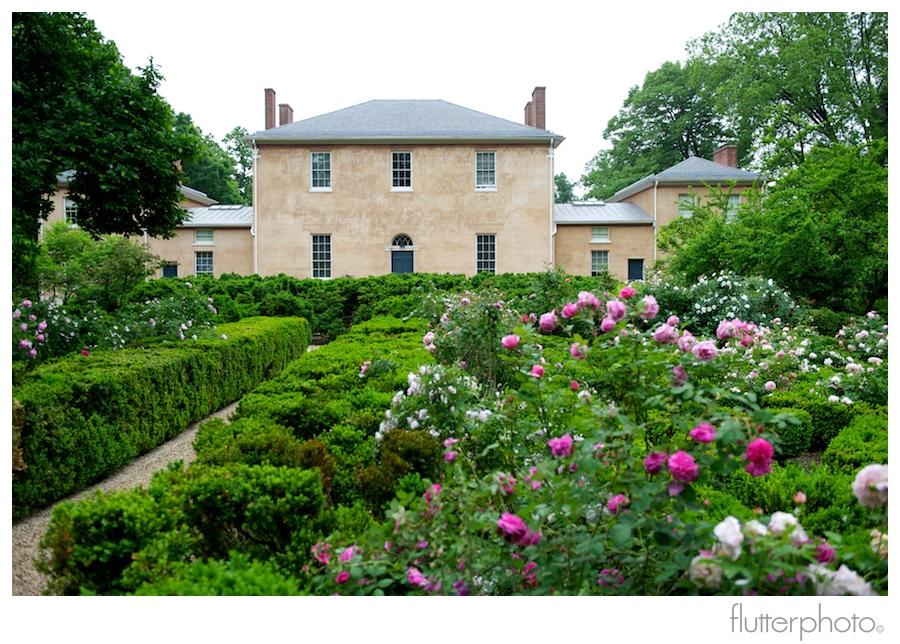 Flutterphoto blog soyeon gokhan ceremony at the tudor Tudor place historic house and garden