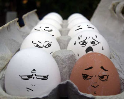 Funny Egg Photography