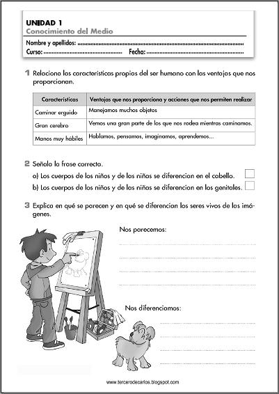 http://www.primerodecarlos.com/TERCERO_PRIMARIA/septiembre/unidad1/fichas/cono/ficha1.pdf