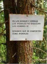 En los bosques y sierras etc