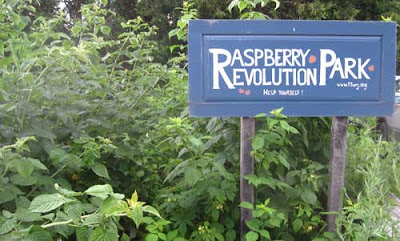 Handpainted sign in a raspberry patch reading Raspberry Revolution