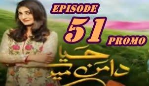 Haya Kay Daman Main Episode 51 Promo by Hum Tv