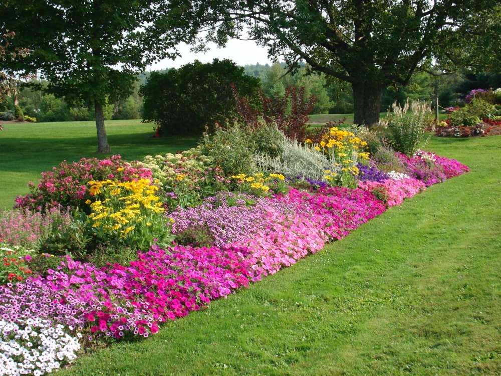 The meditative gardener simplify your flowerbed for Flower beds in front of house