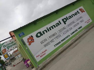 animal planet 5