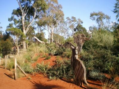 Article the melbourne zoo a tap to nature one for all for Landscape design courses melbourne