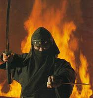 Story of Ninja