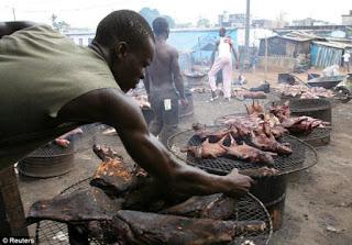 Makanan Terunik dan teraneh didunia