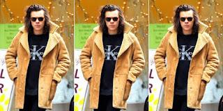 Harry Styles Bakal Rilis Koleksi Busana Pria Model