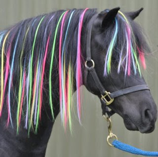 Horse Hair Extensions Color 56